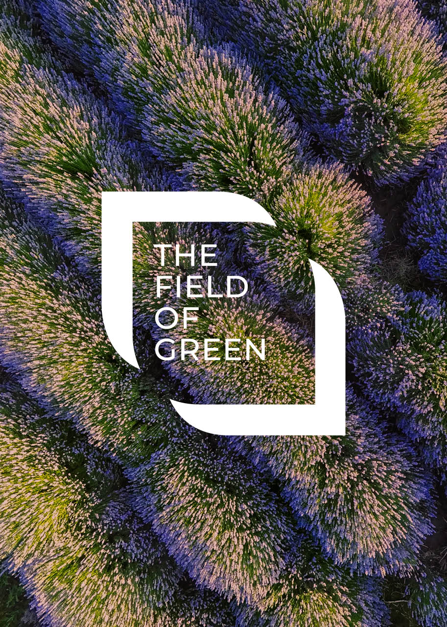 Voorstel <wbr> Discover The Field of Green